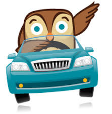 Clip Art Owl driving  and signaling